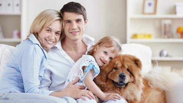 Wills & Trusts dog-young-family Direct Wills Earley